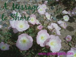 A Message to Share 2