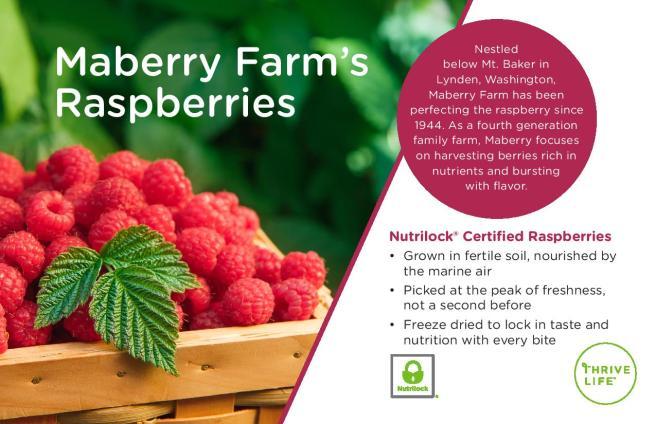raspberrymuffinflyer-page-002