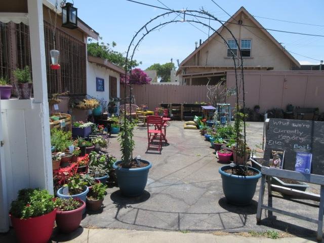 garden shot_EML
